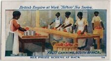 South Africa Native Women Canning Fruit 1920s Trade Ad Card