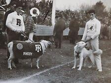 vintage 1930 Photo Rhode island Rams mascot & Connecticut Husky dog Football *
