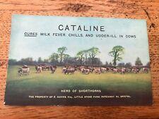 More details for 1900s colour postcard