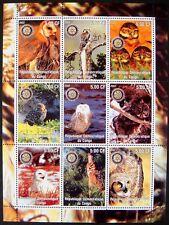 2002 MNH CONGO OWL STAMPS SHEET BIRDS OF PREY SNOWY OWL BARN WILDLIFE NATURE