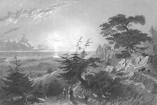Lebanon, MOUNTAIN PASS CEDAR TREES BAROUK VILLAGE ~ Old 1836 Art Print Engraving