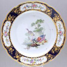 Tournai Den Haag um 1780: Prächtiger Teller mit Vögeln, Kobalt Prunkteller plate