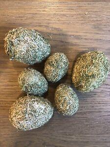 POTTERY BARN Moss Egg Vase Filler, Set of 6 - Easter Decor - GREAT CONDITION