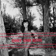 """1954 BETTIE PAGE 20x20 LARGE Photo """"QUEEN OF PIN-UPS"""" Cheetah Suit with KNIFE"""