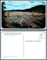 IDAHO Postcard - Log Storage On Coeur d'Alene Lake Q56