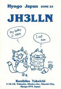 1988 QSL HAM RADIO CARD HYOGO JAPAN FUNNY Cartoon Illust of 2 CATS POSTCARD