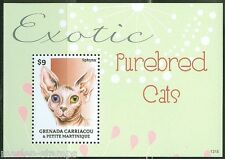 Grenada Grenadines 2014 Exotic Purebreed Cats Souvenir Sheet Mint Nh