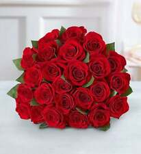 24 Fresh Roses delivered to your door - Freedom Red Fresh Cut Flowers