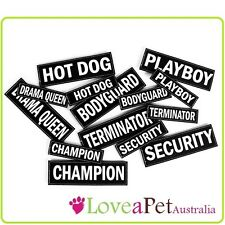 Small Side Patch Labels for EzyDog Convert Harness - Personalise and Accessorise