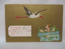 Vintage Embossed Postcard Baby Announcement Stork With Baby In Hatched Egg 1910