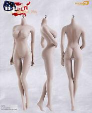Phicen 1/6 Female Seamless Figure Body L Bust PALE Steel Skeleton S07C USA
