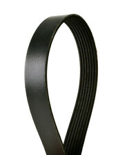 Serpentine Belt-Multi-v Continental Elite 4070905