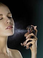 Yorkie Puppy Perfume Photo Print 8.5 x 11