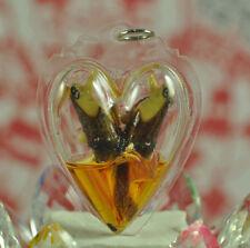 RARE Sarika Bird Oil Thai Buddha Amulet Pendant Magic Charm Love Luck Rich Lucky