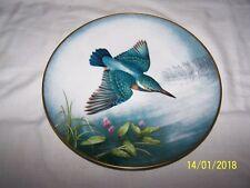 Eisvogel ~ Alcedo Atthis ~ Common Kingfisher ~ Limoges ~ Franklin Mint ~ Plate