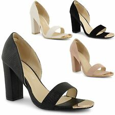 Evening Court Synthetic Shoes for Women