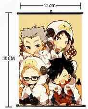 Anime Haikyuu high school volleyball Wall Poster Scroll Home Decor Cosplay 1077