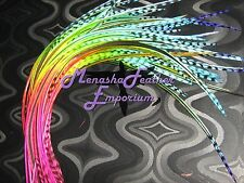 feather extensions Long ombre multitone Rainbow Whiting Grizzly Variant  beads