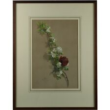 Old Framed Antique Botanical Rose & Hawthorne Still Life Watercolour Signed 1877