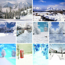 Winter Scenery Studio Photo Background Backdrop Wall Decor