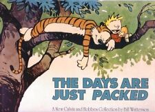 Calvin and Hobbes – the Days are Just Packed Bill Watterson in English