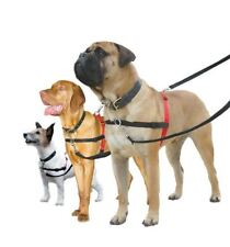 Harnais en tissu pour chien