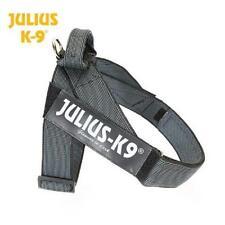 Julius K9 IDC-Gurtbandgeschirr, Color&Gray, Gr. 0, GRAU, Sommergeschirr