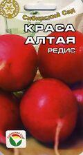 """Radish """"Beauty of Altai"""" (Siberian Garden)"""
