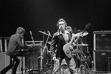 "Elvis Costello & The Attractions At Jai Lai Fronton Tampa, Florida 16"" X 24"""