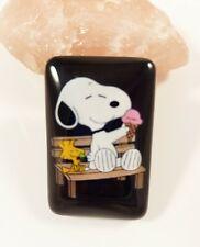Snoopy & Woodstock mit Eis Ice Peanuts - Friends / Magnet Kühlschrankmagnet Neu