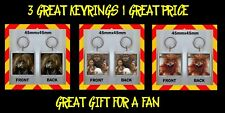 LABYRINTH 1986 MUSICAL FANTASY -  VALUE KEYRINGS - KEY CHAINS - GREAT GIFT