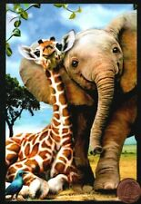 Baby Giraffe Elephant Snuggling - Medium Size - Blank Greeting Note Card New