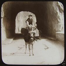 Glass Magic Lantern Slide PEASANT WOMAN ON DONKEY NICE C1910 FRANCE