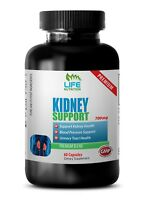 Kidney Support 700mg - Urinary Tract Infection Gallbladder Health Supplements 1B