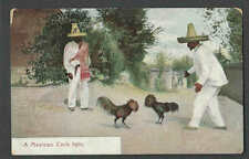 Ca 1912 PPC* VINTAGE COCK FIGHTING IN MEXICO MINT