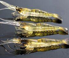 10Pcs Lure Bait Shrimp Fishing Simulation Prawn Saltwater Hooks Realistic