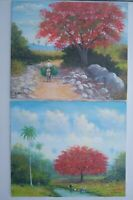 (2) Landscape Flamboyant Tree Painting Oil on Canvas 20x24 E. Vidal 2006, Signed