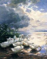 Stunning art Oil painting Alexander Koester - Ducks in the Morning hand painted