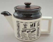 Beauce Single Teapot Advertising Repro Crock Dr Bucklands cb Art Pottery Canada