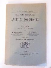 Anatomie des Animaux Domestiques équidés Cheval âne Mulet Généralités 1937