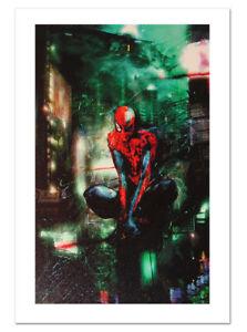 Spider-Man Timestorm 2009/2099 Canvas Giclee Art Print Chris Shy Marvel Artworks