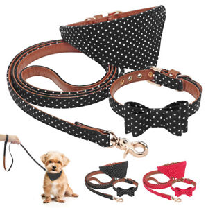 Small Dog Collar & Neck Scarf & Leash Pet Puppy Necklace Padded Chihuahua Yorkie
