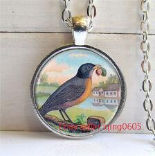 Vintage Parrot  Cabochon Tibetan silver Glass Chain Pendant Necklace #D60