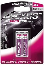 2 x Tecxus Akkus Accus AAA Micro 600mAh für Gigaset S810A S810H SX550i