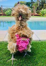 AU Seller Handmade Pink Pet Chicken / Duck Diaper, Nappy, Pants