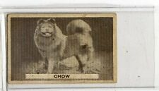 (Jb3013-100)  SWEETACRE,FAVOURITE DOGS,CHOW,1932#13