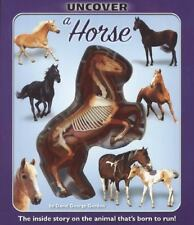 Uncover a Horse (Uncover Books) by Gordon, David George