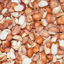 Split Peanuts - Premium Nut Protein For Wild Birds In Your Garden