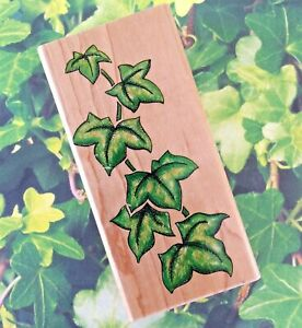 Ivy Wood Mount Rubber Stamp English Evergreen Climbing Plant Leaves Nature Print