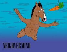 "059 BoJack Horseman - Animated Sitcom Raphael Bob-Waksberg 18""x14"" Poster"